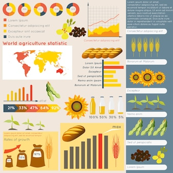 Agriculture farming organic food plant wheat sunflower charts and graphs vector illustration