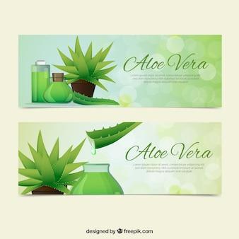 Aloe vera banner