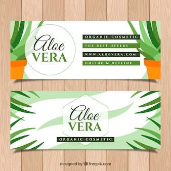 Aloe vera banners with pots