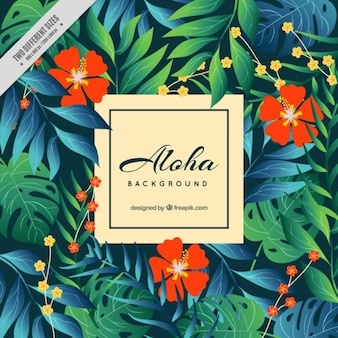 Aloha background with red flowers