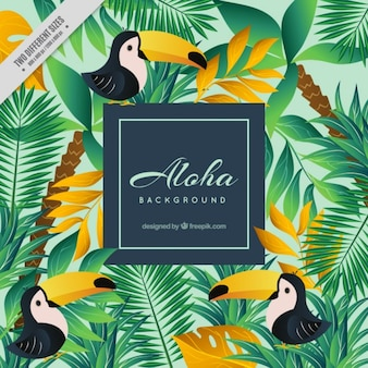 Aloha background with toucans