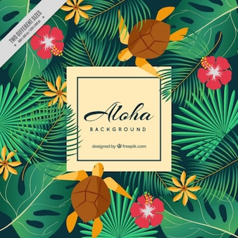 Aloha background with turtles