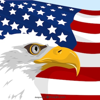 American eagle flag vector free