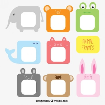 Animal frames collection