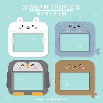 Animal frames polar edition