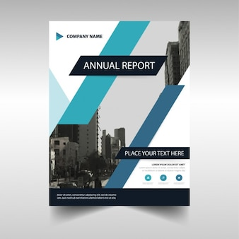 Annual brochure with blue lines