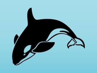 ベクトルパックの水生動物シャチ