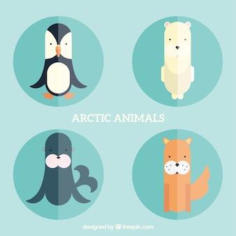 Arctic animals in flat design