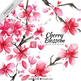Artistic background of watercolor cherry blossoms
