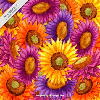 Artistic colors sunflowers background