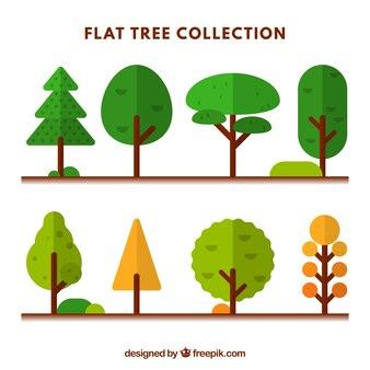 Assortment of beautiful trees in flat design