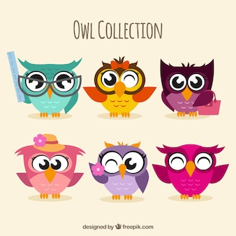 Assortment of colorful owls in flat design