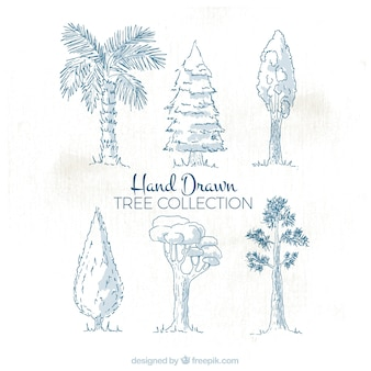 Assortment of hand-drawn trees