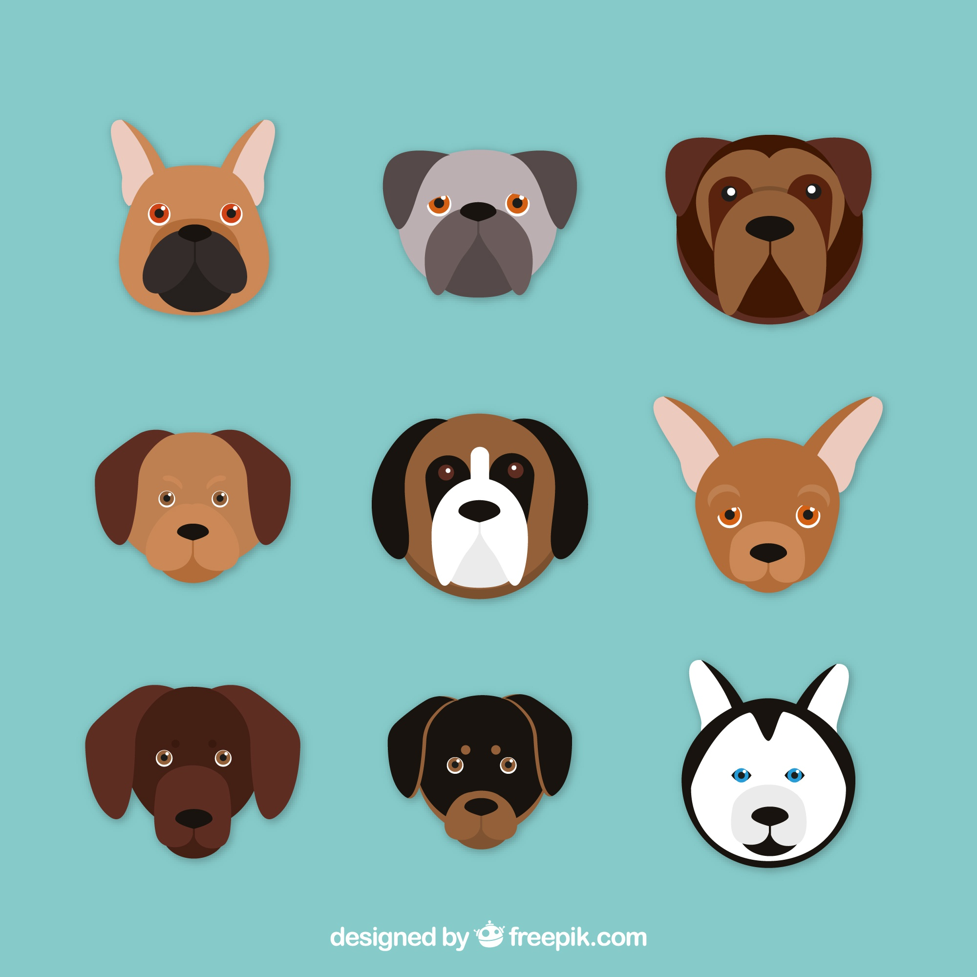 Assortment of nine dogs of different breeds