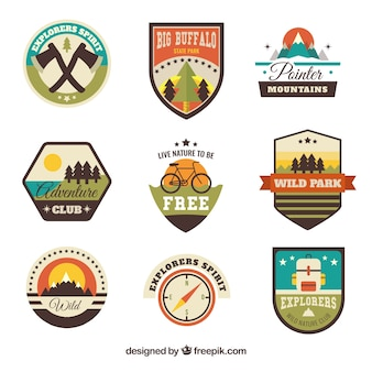 Assortment of vintage adventure badges