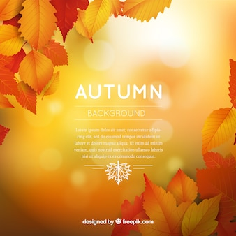Autumn background with flat design and warm colors