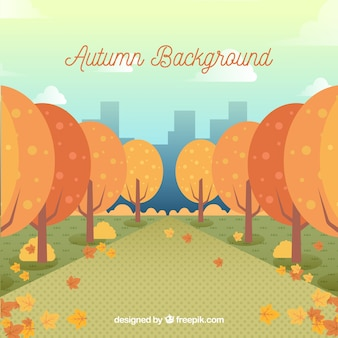 Autumn background with trees in the city