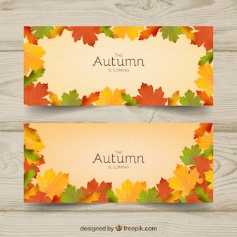 Autumn banner with leaves frame