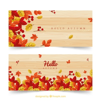 Autumn banner with multicolor flowers