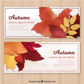 Autumn banner with realistic leaves
