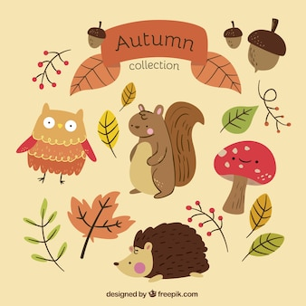 Autumn collection with hand-drawn animals