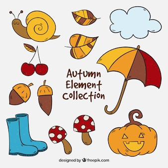 Autumn elements collection