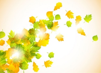 autumn fly leaves vector background