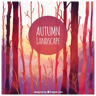 Autumn lanscape