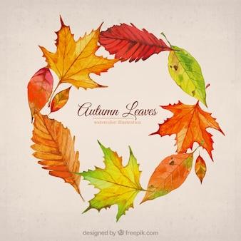 秋の葉のイラスト