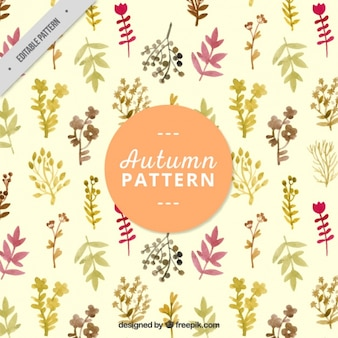 Autumn pattern with beautiful leaves