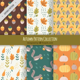 Autumn patterns in vintage design