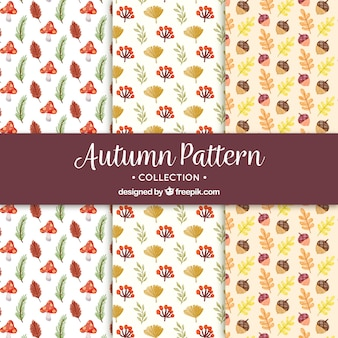 Autumn patterns with hand drawn style