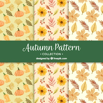 Autumn patterns with watercolor flowers and pumpkins