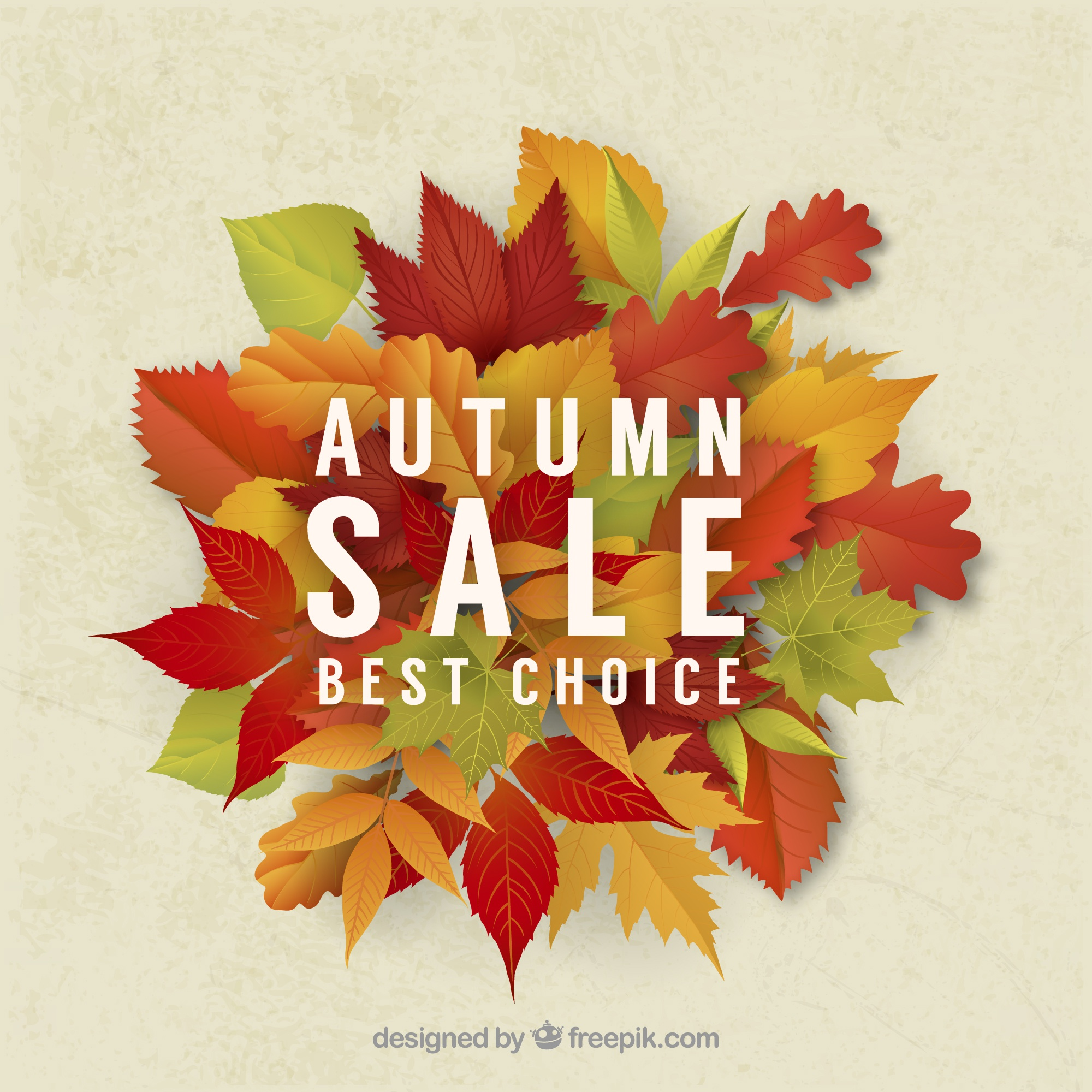 Autumn sale background of dry leaves