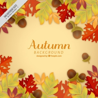 Autumnal background of natural elements