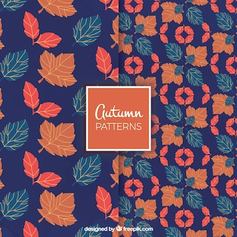 Autumnal patterns with blue background