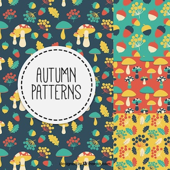 Autumnal patterns with colorful elements