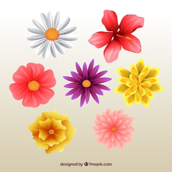 Awesome flowers in realistic style