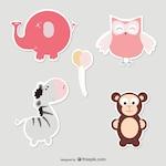 Baby elephant, owl, zebra and monkey