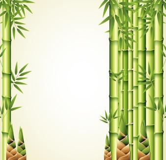 竹の茎を使った背景のデザイン