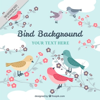 Background in vintage style with lovely birds