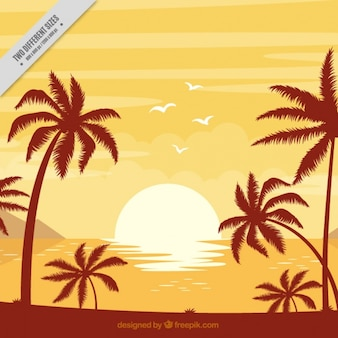 Background of beach with palm trees at sunset