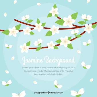 Background of branches with jasmine