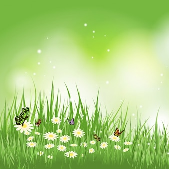 Background of butterflies flying in a grass with daisies