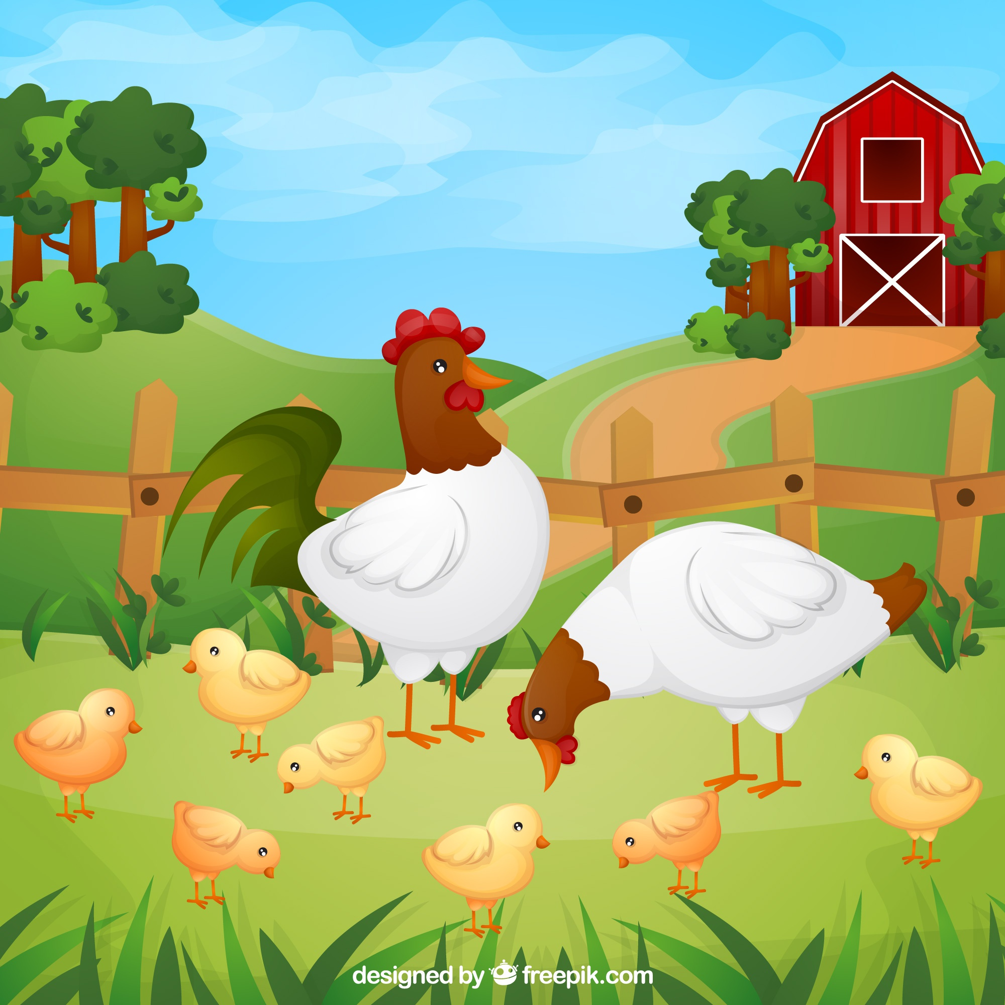 Background of chickens with chicks on the farm