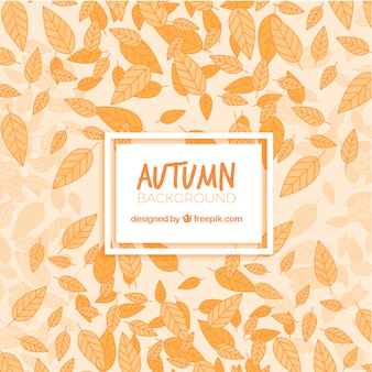 Background of hand drawn dry autumn leaves