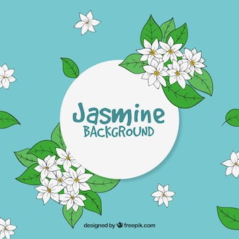 Background of jasmine and hand drawn leaves