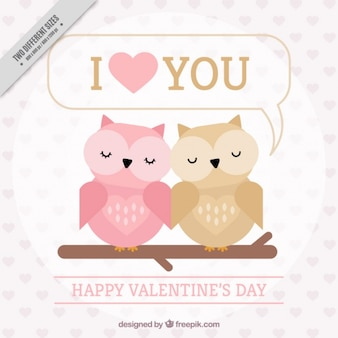 Background of love owls