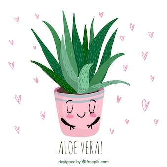 Background of lovely aloe vera flowerpot