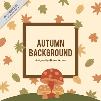 Background of mushrooms with autumn leaves